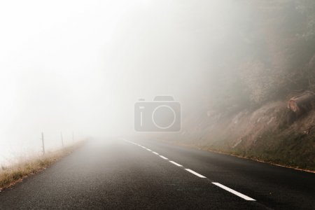 Danger foggy road in the forest