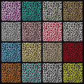 Set of leopard seamless patterns