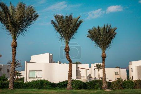 Hôtel égyptien avec palmiers et ciel bleu