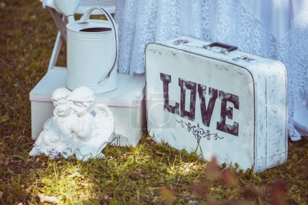Beautiful white suitcase in nature