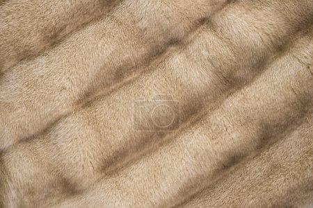 Photo pour Vison brun fourrure manteau texture fond - image libre de droit