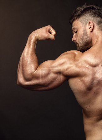 Photo for Strong Athletic Man Fitness Model posing back muscles, triceps, latissimus over black background - Royalty Free Image