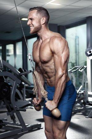 Muscular bodybuilder guy doing triceps exercises