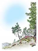 Green pines Nordic landscape
