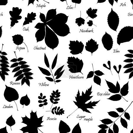 modèle sans couture des silhouettes de feuilles avec des noms