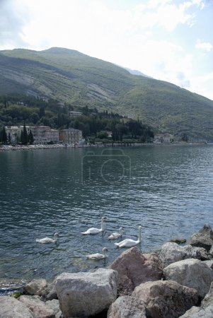Torbole is situated on the extreme north-western appendix of the Baldo chain in the Trento region of Italy. and it is set as an amphitheatre on Lake Garda.