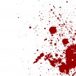 Dark red splash on white background. Vector illust...