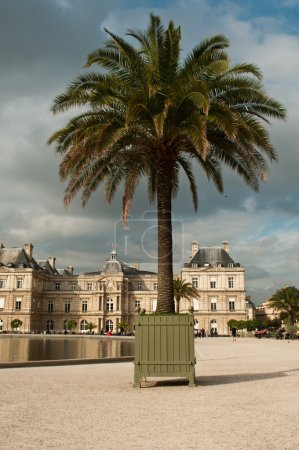 Photo for Luxembourg Gardens in Paris, France - Royalty Free Image