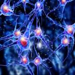 3d illustration of viruses attacking nerve cells, ...