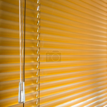 window blinds closed