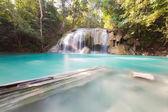 Deep forest water falls