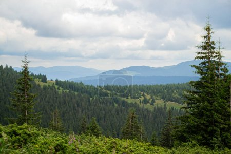 Photo for Beautiful mountain landscapes in the Ukrainian carpathians. - Royalty Free Image