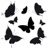 Pillangók design