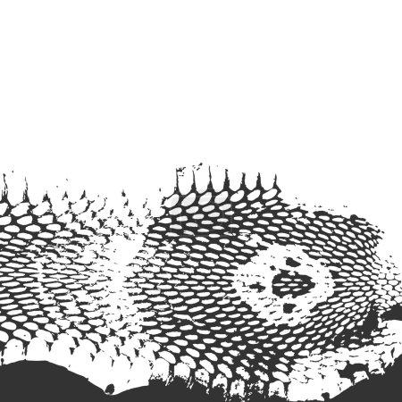 Illustration pour Texture abstraite peau de serpent, tête de cobra. noir sur fond blanc. Illustration vectorielle - image libre de droit