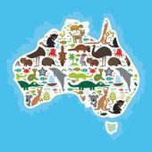 Map of Australia. Echidna Platypus ostrich Emu Tasmanian devil Cockatoo parrot Wombat snake turtle crocodile kangaroo dingo octopus fish. Vector
