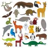 South America sloth anteater toucan lama bat fur seal armadillo boa manatee monkey dolphin Maned wolf raccoon Hyacinth macaw lizard turtle crocodile deer penguin Blue-footed booby Capybara Vector illustration