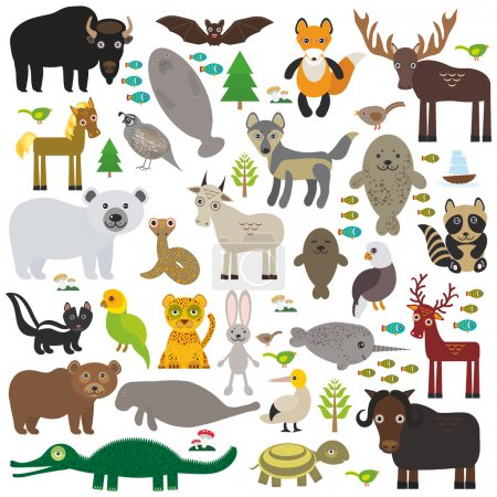 bison bat manatee fox elk horse wolf partridge fur seal Polar bear Pit viper snake Mountain goat raccoon Eagle skunk parakeet Jaguar hare narwhal elk Grizzly gannet Muskox turtle alligator. Vector
