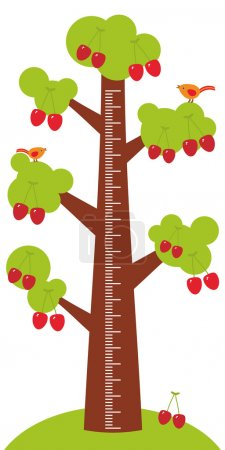 Big tree with green leaves and ripe red cherry on white background Children height meter wall sticker, kids measure. Vector