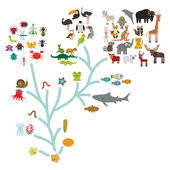 Evolution in biology scheme evolution of animals isolated on white background children's education science Evolution scale from unicellular organism to mammals Vector