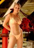 Playboy modello rebecca newell - costumi da bagno tiro posizione daytona beach fl