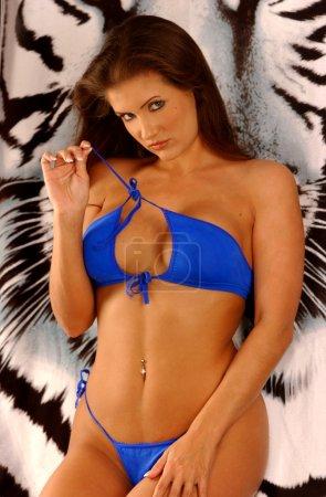 Skimpy Blue String Bikini - Busty Bombshell Brunette - White Tiger Background