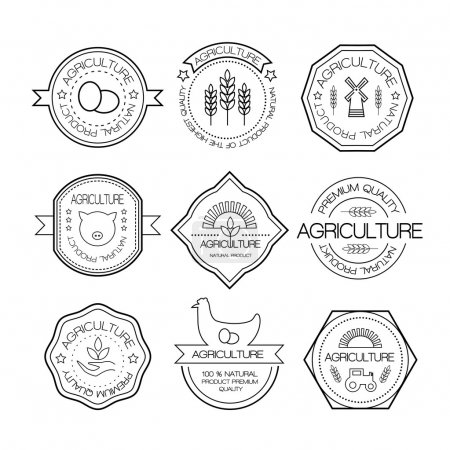 Illustration for Set of vintage style elements for labels and badges for natural organic products, biodynamic agriculture. Agriculture and farming logos in linear style. - Royalty Free Image