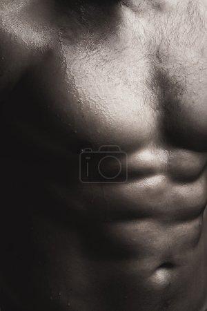 Muscular male wet torso