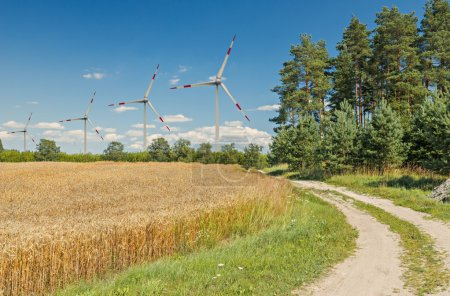 Countryside landscape with ripening wheat and wind turbine for production of electricity