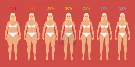 Illustration for Stages of woman slim with fat percent - Royalty Free Image