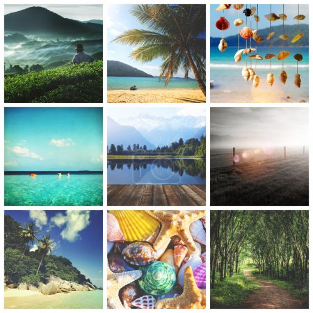 Collage of nature pictures