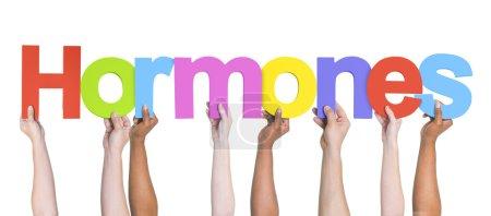 Hands Holding Hormones word
