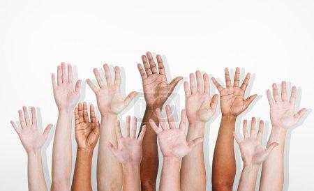 Diverse Ethnic Hands Variation