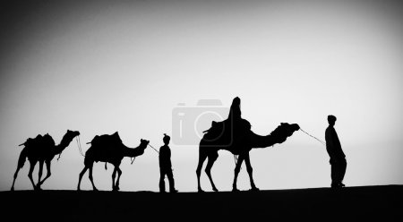 Men Riding Camels in  Desert