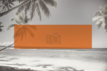 search bar frame and tropics