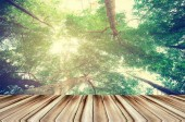 wood , perspective with nature background