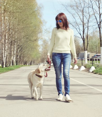 Owner and labrador retriever dog outdoors walking in the city