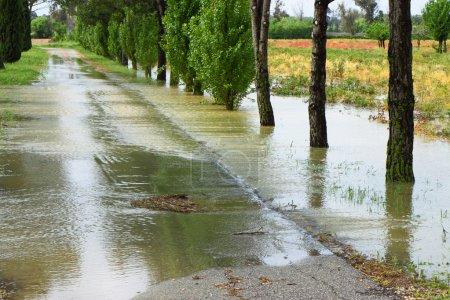 Photo pour Champs inondés après le raïon torrentiel - image libre de droit