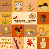 Square Woodland Autumn Vector Set