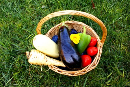 Basket with fresh vegetables and fruits , on grass isolated.