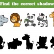 Find the correct shadow, education game for childr...