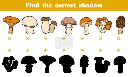 Illustration for Find the correct shadow, education game for children. Set of edible mushrooms. - Royalty Free Image