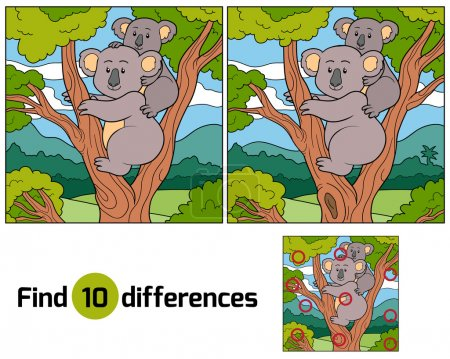Find differences (koala)