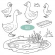 Set of cute farm animals and objects, vector goose...