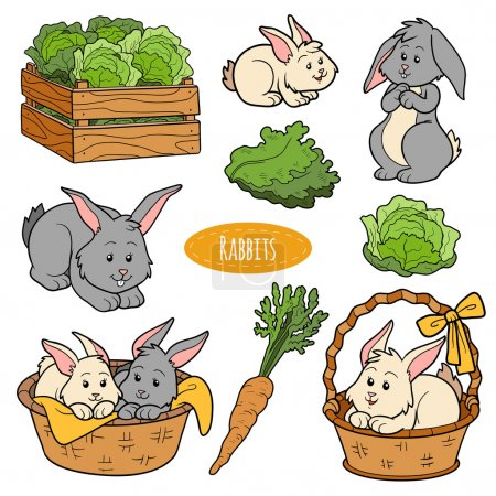 Illustration pour Ensemble de couleurs d'animaux et d'objets de ferme mignons, lapins de la famille des vecteurs - image libre de droit