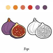 Coloring book: fruits and vegetables (figs)