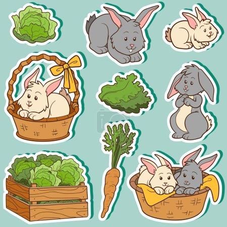Illustration pour Ensemble de couleurs d'animaux et d'objets domestiques mignons, de lapins et d'objets de la famille des vecteurs - image libre de droit