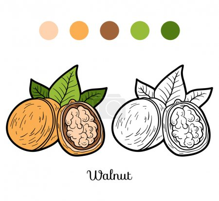 Coloring book for children: fruits and vegetables (walnut)