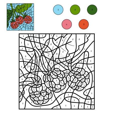 Illustration pour Couleur par numéro : fruits et légumes (framboise ) - image libre de droit