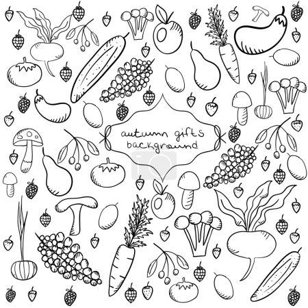 Illustration pour Arrière-plan avec récolte d'automne en style doodle dessiné à la main. Sur l'illustration vectorielle représente les légumes, les fruits, les baies et les champignons . - image libre de droit