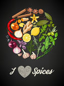 Illustration of circle of spices and herbs